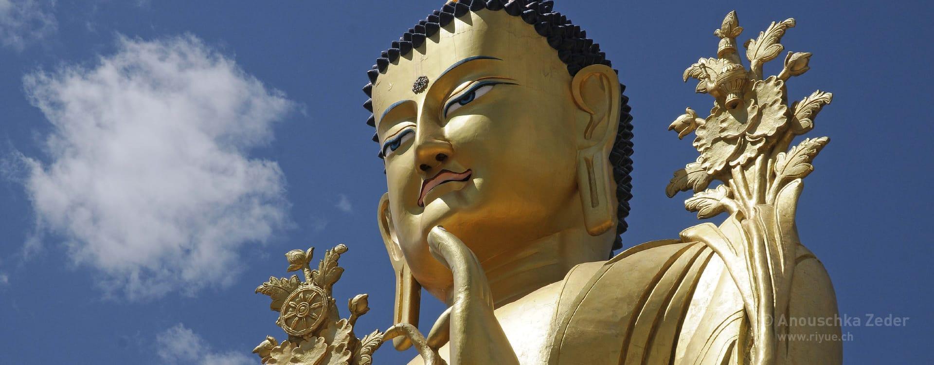 riyue – Ernährungsberatung (Diätetik) – Buddha Ladakh