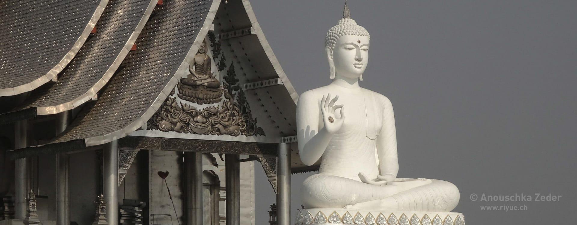 riyue – Shiatsu – Buddha Mahamudra