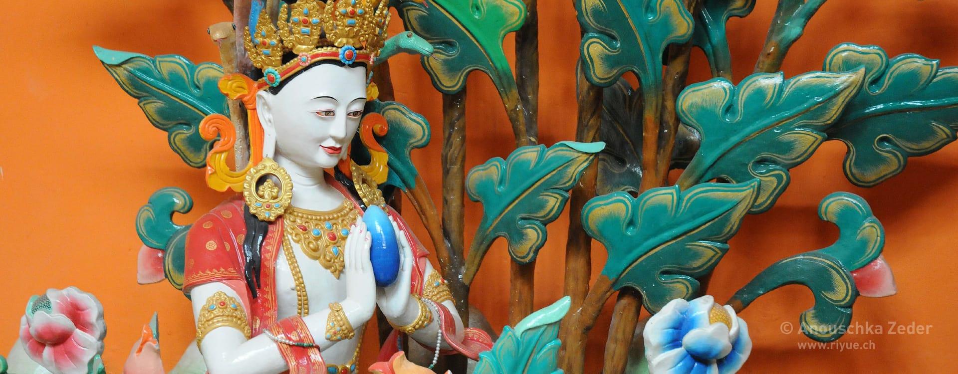 riyue – TCM Traditionelle Chinesische Medizin – Buddha Ladakh